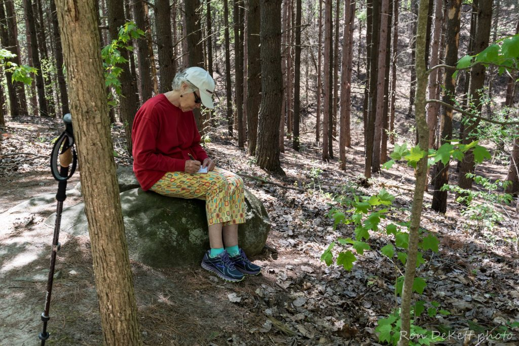 Nan Lundeen, poet at work. Photo by Ron DeKett.