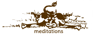cow4meditate