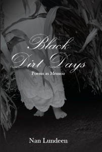 The book's cover. Photo by Ron DeKett, design by Kristin Toney.