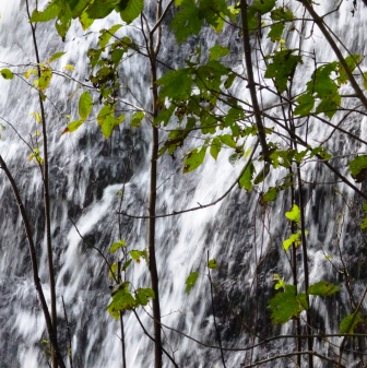 falling water by nan lundeen