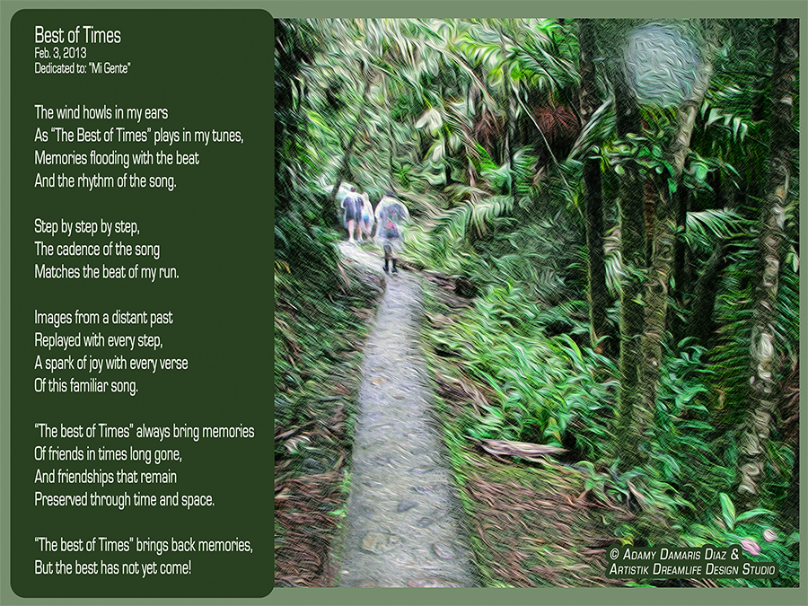 Best of Times by Adamy Diaz Picture: Rain Forrest Trail, Puerto Rico trip 2006